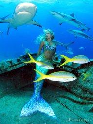 Hannah Mermaid 7